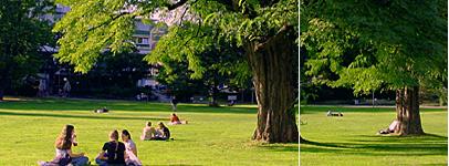 Stuttgart Information Www Stuttgart Biz Parks In Stuttgart